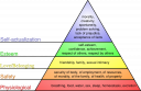 800px-maslows_hierarchy_of_needssvg.png