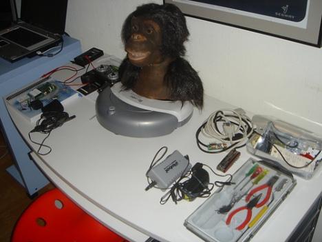 roomba_monkey.jpg