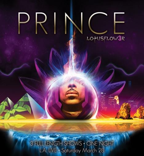 prince-lotusflower